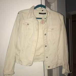J brand jean jacket